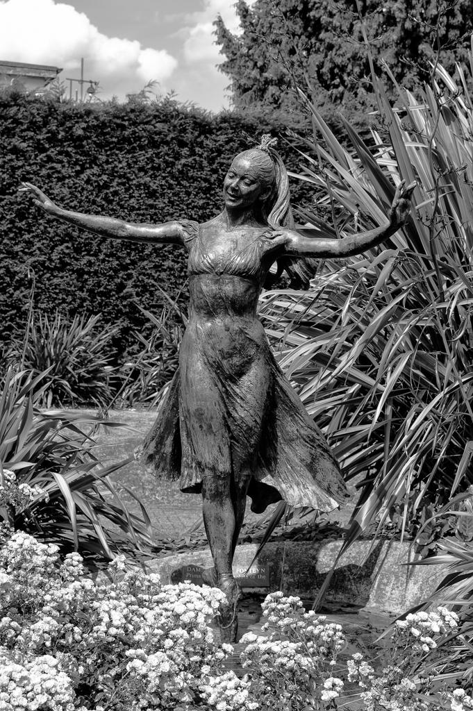 Dame Margot cropped: Tri-Elmar at 50mm (Mike Evans)