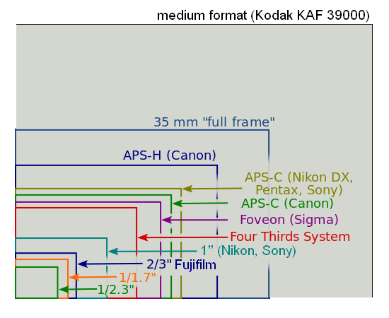 The 1in sensor may look small in comparison with APS-C or 35mm