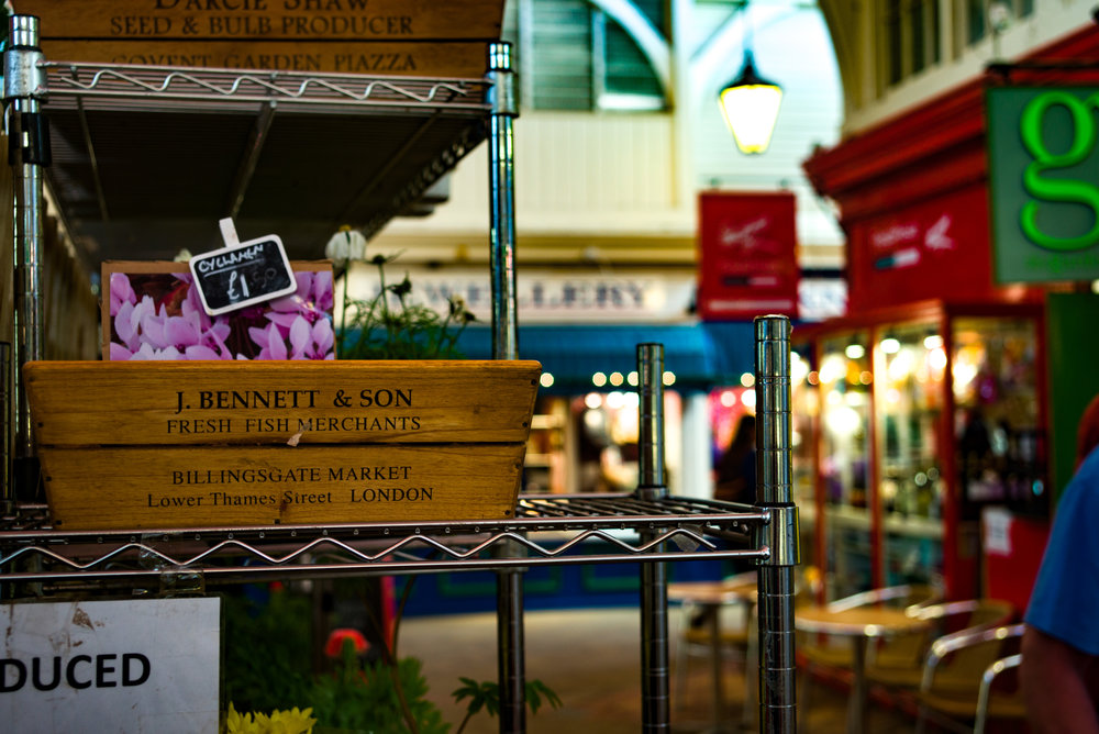 A touch of bokeh at f/4.8, taken at 50mm with the Tri-Elmar and Leica M-D