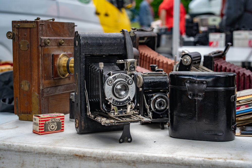 Folding cameras are not expensive (unless they are rare, of course) and you can pick up pretty ornaments for between €15 and €40. Most will actually work if you have the patience and can find the film