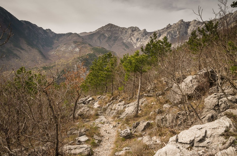Leaving the plateau through the woods on a day with unobstructed views of the Velebit mountains.