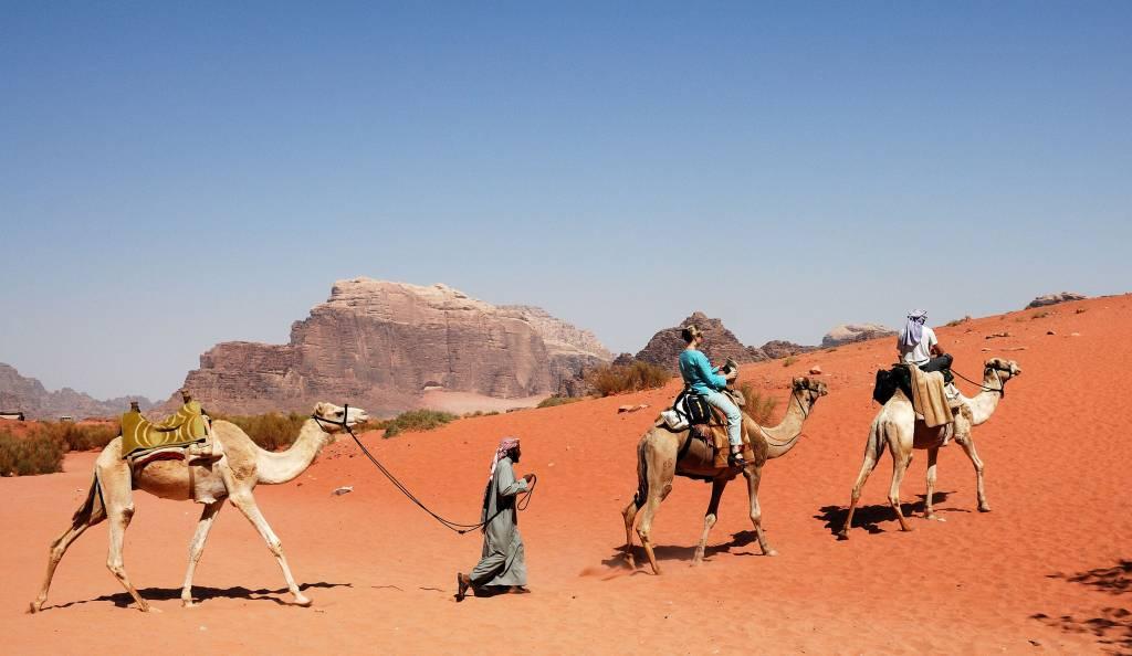 Camel Train at Wadi Rum