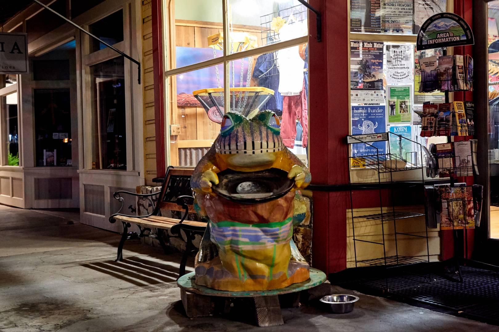 Murphys Storefront Frog