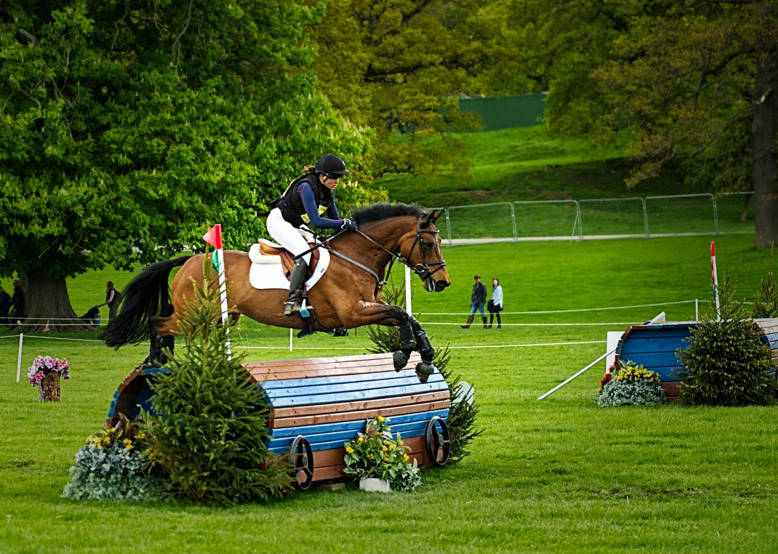 Chatsworth House - Horse Trials, 11th May 2019. Fujifilm XT2 - with 50-140mm F2.8, at 61mm, 1/800s, f/2.8, ISO 200