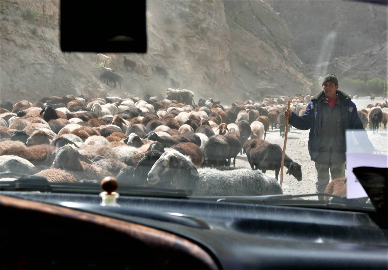 Local goatherder, through the front window, an old road in Tajikistan
