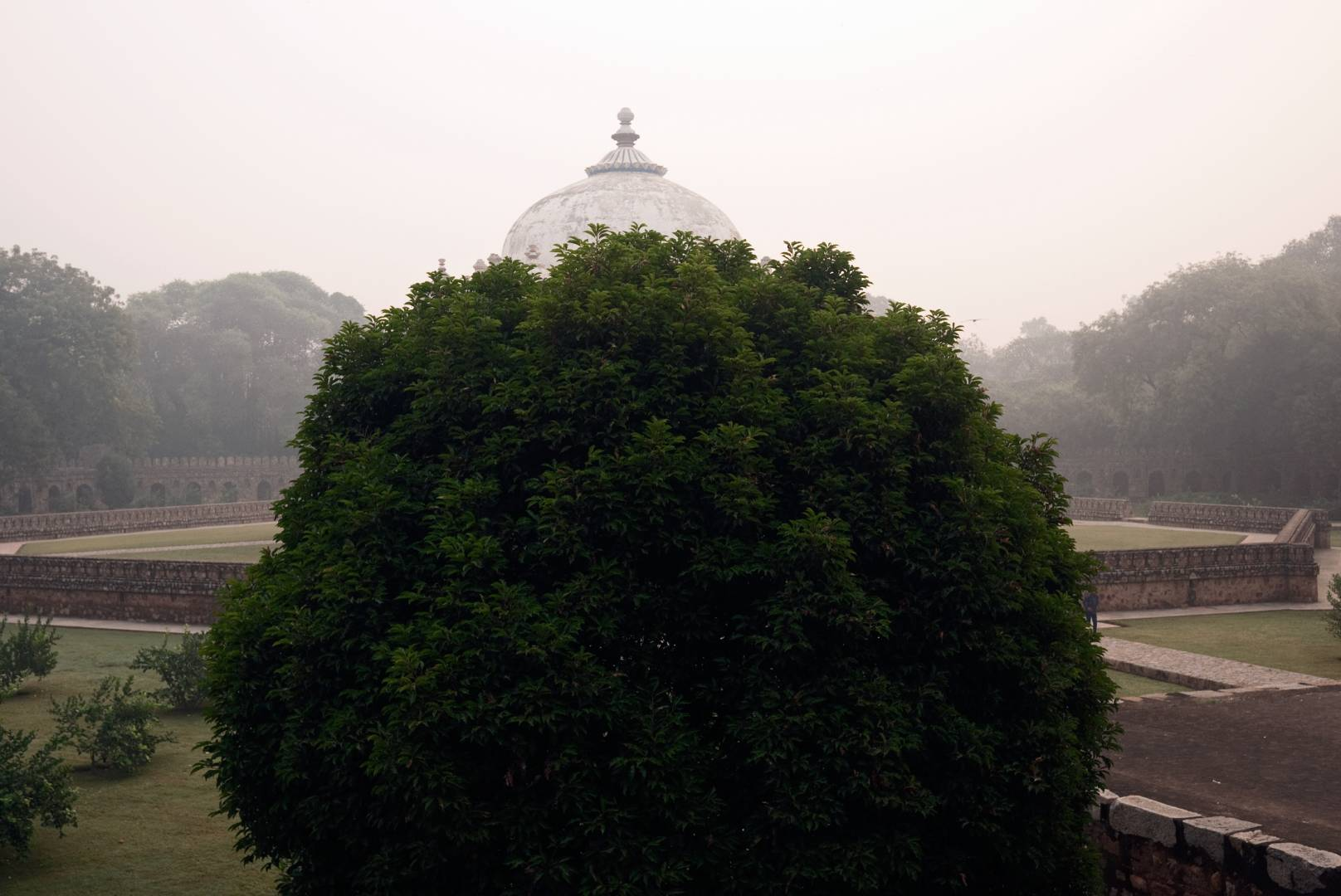 Isa Khan's Tomb, Nizamuddin, is one of many garden-tombs in the Humayun complex. One can get habituated very quickly to the tombs scattered about the city but in this case I like how the tree mimics the dome.