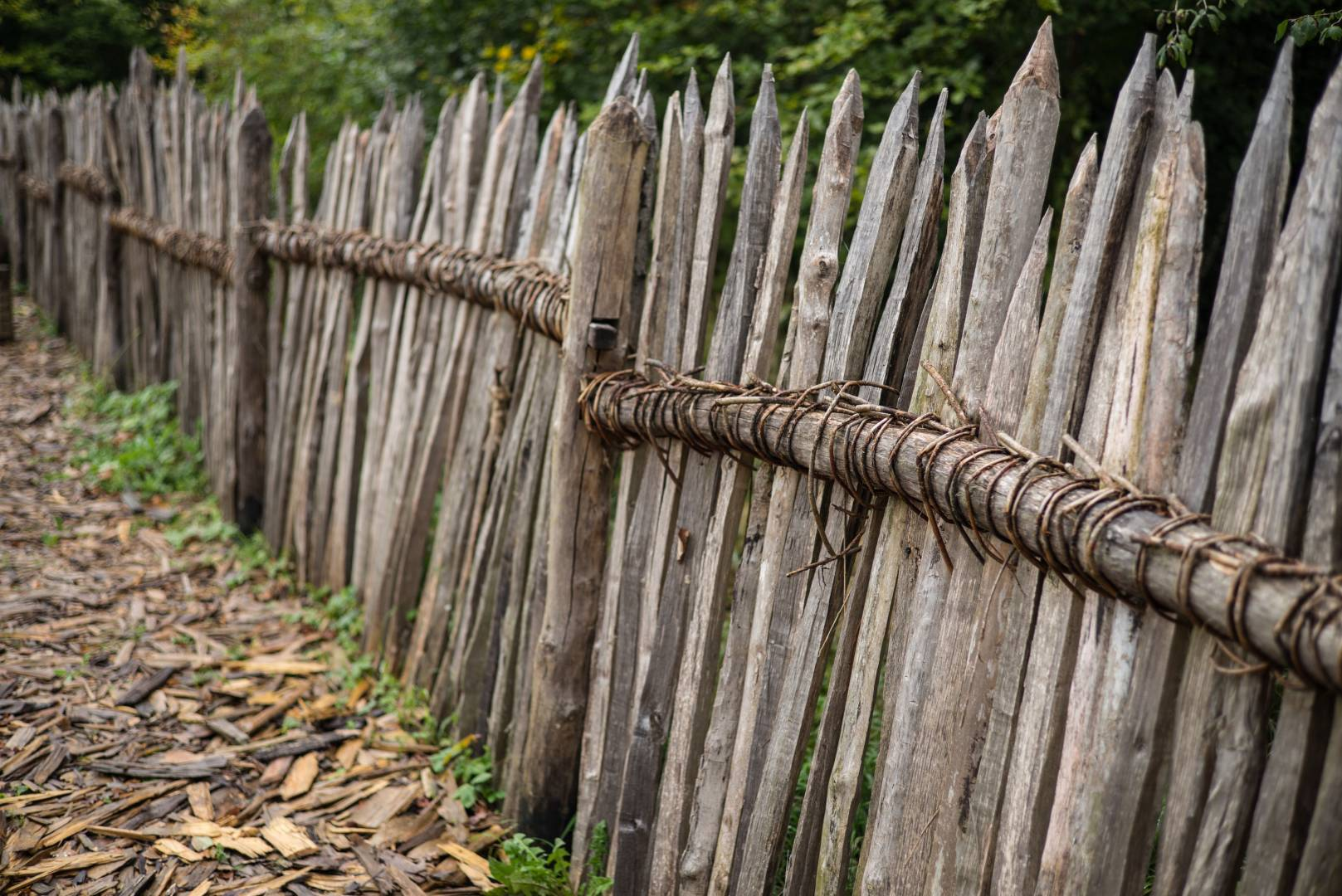 """Like 1000 years ago: Fence on the experimental archaeology project site """"Campus Galli"""". Summarit-M 50/2.4 1/350 sec, f/2.4, ISO 200 - Leica M Typ 262 (Image ©Jörg-Peter Rau)"""